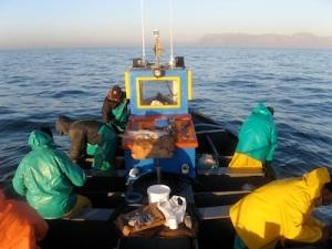 Artisanal fishermen in Cape Town